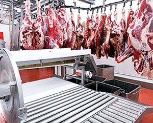 Очистные сооружения для мясоперерабатывающих предприятий